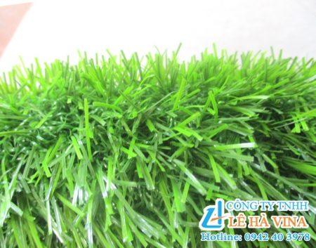 Cỏ nhân tạo sân vườn LH30AT, Cỏ nhân tạo sân vườn, Cỏ nhân tạo, Cỏ tự nhiên, Giống cỏ thật