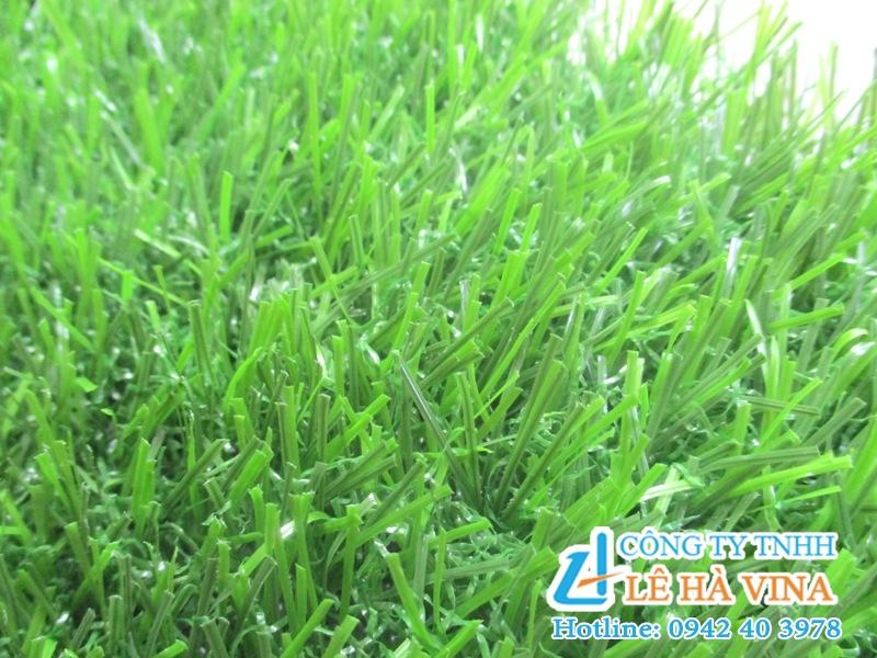 Cỏ nhân tạo sân vườn LH25AT, Cỏ nhân tạo, Cỏ tự nhiên, Dòng cỏ LH25AT, Cỏ