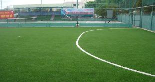 Cỏ nhân tạo sân bóng đá, Công ty Lê Hà Vina, Báo giá cỏ nhân tạo sân bóng đá, Cỏ nhân tạo, Thi công cỏ nhân tạo sân bóng đá