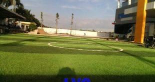 sân bóng đá, Cỏ nhân tạo sân bóng đá, Giá cỏ nhân tạo, Thảm cỏ, Công ty LeHa Vina