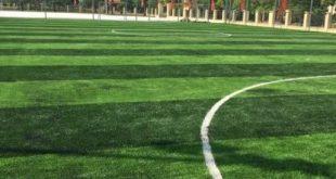 Sân bóng đá Mê Linh, Sân bóng đá, Sân chơi bóng, Thi công sân bóng đá cỏ nhân tạo, Cỏ trồng tự nhiên