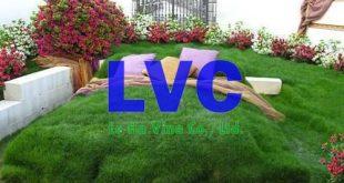 Cách làm đồi cỏ nhân tạo, Đồi cỏ nhân tạo, Cỏ nhân tạo, Thiết kế sân vườn cỏ nhân tạo, Sân vườn