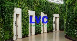Cỏ dán tường, Sử dụng cỏ dán tường, Cỏ nhân tạo để ốp tường, Trang trí cỏ dán tường, Trang trí tường nhà