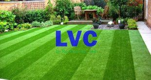 Cỏ nhân tạo giá rẻ, Cỏ nhân tạo giá bao nhiêu, Giá cỏ nhân tạo, Mua cỏ nhân tạo giá rẻ, Trang trí sân vườn