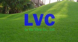 Giá cỏ nhân tạo, Loại cỏ nhân tạo, Cỏ tự nhiên, Thảm cỏ nhân tạo, Cỏ nhân tạo sân golf
