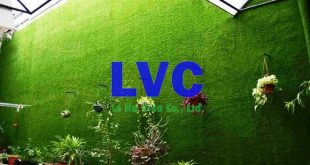 Thảm cỏ dán tường, Công ty Lê Hà Vina, Cỏ dán tường, Cỏ tự nhiên, Thảm cỏ