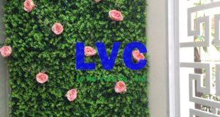 Thảm cỏ trang trí, Thảm cỏ tự nhiên, Đầu tư thảm cỏ trang trí, Chất liệu nhựa tổng hợp, Cỏ nhân tạo