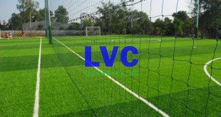 Thi công sân cỏ nhân tạo tại Đà Nẵng, Sân cỏ, Sân cỏ nhân tạo, Trải cỏ, Sân bóng cỏ nhân tạo