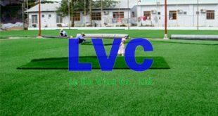 Cỏ sân bóng nhân tạo, Công ty Lê Hà Vina, Sân bóng đá nhân tạo, Sợi cỏ nhân tạo, Thảm cỏ nhân tạo, Cỏ sân bóng