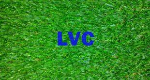 Giá cỏ nhân tạo rẻ nhất, Sợi cỏ nhân tạo, Cỏ nhân tạo, Công ty Lê Hà Vina, Giá cỏ nhân tạo