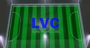 Kích thước sân 7 người, Thảm cỏ nhân tạo, Công ty Lê Hà Vina, Sân bóng đá mini, Thi công sân bóng đá 7 người