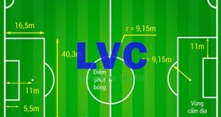 Sân bóng đá 11 người, Thi công sân bóng, Lê Hà Vina, Sân bóng đá, Sân bóng đá nhân tạo