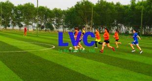 Sân bóng đá mini, Sân bóng đá mini nhân tạo, Kinh doanh sân bóng đá nhân tạo, Thi công sân bóng, Giá cỏ nhân tạo