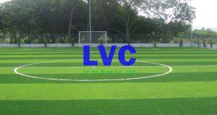 Sân bóng đá mini, Cỏ nhân tạo, Sợi cỏ, Sân cỏ, Công ty Lê Hà Vina