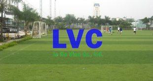 Giá thuê sân bóng đá tại Hà Nội, Sân bóng đá dành cho 11 người, Sân bóng đá mini, Kinh doanh sân bóng đá, Sân bóng đá