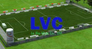 Sân bóng đá mini, Kinh doanh sân bóng đá mini, Sân bóng đá, Công ty Lê Hà Vina, Công ty thi công sân bóng đá