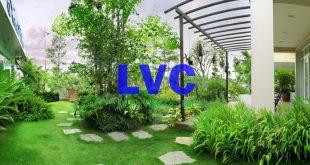 Thi công sân vườn, Thảm cỏ sân vườn, Cỏ nhân tạo sân vườn, Cỏ sân vườn, Không gian sân vườn