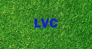 Thảm cỏ nhân tạo, Thảm cỏ nhân tạo TPHCM, Vách cỏ nhân tạo, Thảm cỏ từ nhựa PE, Cỏ giả dán tường