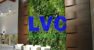 Tường cây giả, Tường cỏ trang trí nhân tạo, Vườn tường cây giả, Tường cây tự nhiên, Tường cây thật