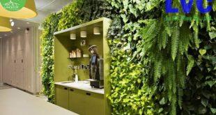 vị trí đặt tường cỏ nhựa, tường cỏ nhựa, Đặt tường cỏ nhựa, tường cỏ trang trí, tấm cỏ nhân tạo