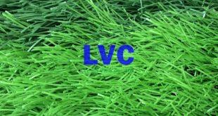 Cỏ nhân tạo sân vườn lh71at, Cỏ nhân tạo sân vườn, Công ty Lê Hà Vina, Cỏ nhựa để trang trí