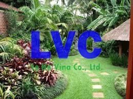 Trang trí sân vườn, Thi công làm sân vườn, Công ty Lê Hà Vina, Thảm cỏ nhân tạo, Sân vườn cỏ nhân tạo