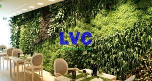 Tường cây giả chất lượng, Tường cây giả, Công ty Lê Hà Vina, Thi công tường cây giả, Tường cây