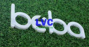 Cỏ nhân tạo dán tường, Cỏ nhân tạo giá rẻ ở Hà Nội, Lê Hà Vina, Thảm cỏ nhân tạo, Thi công cỏ nhân tạo dán tường