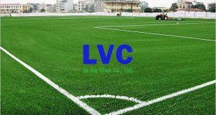 Cỏ nhân tạo sân bóng, Lê Hà Vina, Công ty cung cấp cỏ nhân tạo, Làm sân bóng cỏ nhân tạo, Cỏ nhân tạo