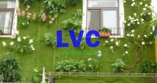 Thảm cỏ nhựa trang trí tường, Thảm cỏ, Thảm cỏ giả, Thảm cỏ trang trí tường, Cỏ nhân tạo