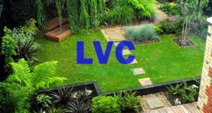 Cỏ nhân tạo trang trí sân vườn, Cỏ nhân tạo, Sân cỏ nhân tạo, Cỏ nhân tạo sân vườn LH05, Lê Hà Vina