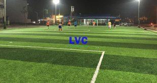 Cỏ nhân tạo sân bóng đá, Sân bóng đá mini, Lê Hà Vina, Thi công sân bóng, Cỏ nhân tạo giá rẻ