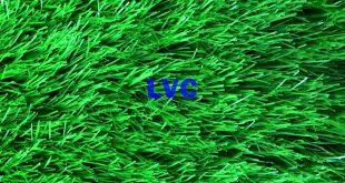Thảm cỏ nhựa, Thảm cỏ nhân tạo, Cỏ nhân tạo giá rẻ, Giá bán thảm cỏ bằng nhựa, Mua thảm cỏ nhựa