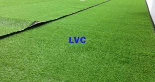 Thảm cỏ nhân tạo trang trí, Thảm cỏ nhân tạo, Lê Hà Vina, Thảm cỏ nhựa, Địa chỉ bán thảm cỏ nhân tạo