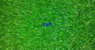 Lựa chọn cỏ nhân tạo, Cỏ nhân tạo, Lê Hà Vina, Cung cấp cỏ nhân tạo, Sợi cỏ