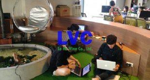 Cỏ nhân tạo để trang trí văn phòng, Cỏ nhân tạo, Lê Hà Vina, Sợi cỏ, Sân bóng cỏ nhân tạo