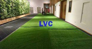 Thảm cỏ nhân tạo, Trang trí spa bằng cỏ nhân tạo, Lê Hà Vina, Cỏ nhân tạo của Lê Hà Vina, Cỏ nhân tạo
