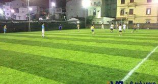 Cỏ nhân tạo sân bóng đá, Cỏ nhân tạo, Cỏ nhân tạo VFG07, Thảm cỏ nhựa, Lê Hà Vina