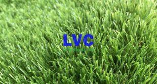 Thảm cỏ nhân tạo, Cỏ nhân tạo, Lê Hà Vina, Thi công lắp đặt thảm cỏ, Thi công cỏ nhân tạo sân vườn
