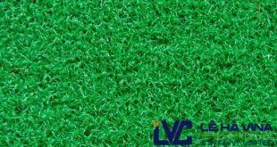 Thảm cỏ nhựa treo tường giá rẻ, Thảm cỏ nhựa, Thảm cỏ nhựa treo tường, Cỏ nhân tạo của Lê Hà, Thảm cỏ nhân tạo