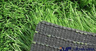 Cỏ nhân tạo chất lượng, Cỏ nhân tạo, Mua cỏ nhân tạo, Sản phẩm cỏ nhân tạo, Kinh doanh cỏ nhân tạo