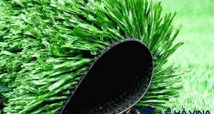 Cỏ nhân tạo, Cỏ tự nhiên, Sân cỏ, Mua cỏ nhân tạo, Lắp đặt cỏ nhân tạo