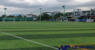 Sân bóng đá cỏ nhân tạo 7 người, Cỏ nhân tạo 7 người, Cỏ nhân tạo chất lượng, Thảm cỏ nhân tạo, Chi phí cỏ nhân tạo