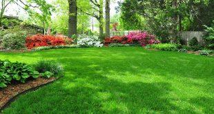 Vườn sân cỏ nhân tạo, Thi công sân cỏ nhân tạo, Lê Hà Vina, Cỏ nhân tạo cao cấp, Cỏ nhân tạo sân vườn