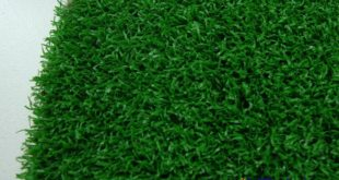Thảm cỏ nhựa TPHCM, Thảm cỏ, Thảm cỏ nhân tạo, Thảm cỏ trang trí văn phòng, Cỏ nhân tạo