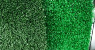 Cỏ nhựa trang trí giá rẻ, Cỏ nhựa trang trí, Lê Hà Vina, Công ty cung cấp cỏ nhựa nhân tạo, Mua cỏ nhựa trang trí giá rẻ