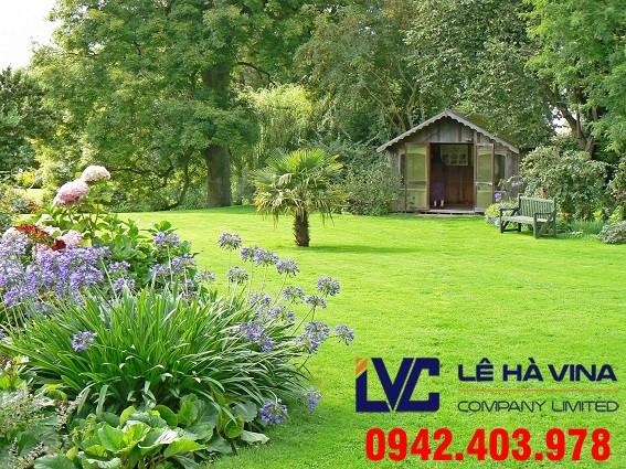 Cỏ trang trí sân vườn, Cỏ trang trí sân vườn nhân tạo, Công ty Lê Hà Vina, Cỏ nhân tạo, Cỏ LH70AT