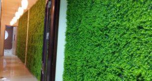Cỏ nhân tạo trang trí tường, Công ty Lê Hà Vina, Cỏ nhân tạo trang trí, Thảm cỏ nhân tạo, Cỏ nhân tạo