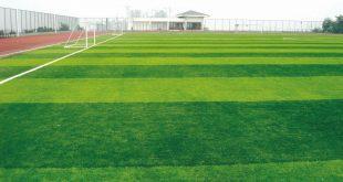 Sân bóng đá, Mua cỏ sân bóng đá giá rẻ, Cỏ sân bóng đá, Cỏ bóng đá, Sân bóng mini
