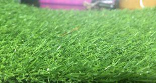 Thảm cỏ trang trí giá rẻ, Lê Hà Vina, Cỏ nhân tạo, Thảm cỏ nhân tạo LH71AT, Thảm cỏ LH05